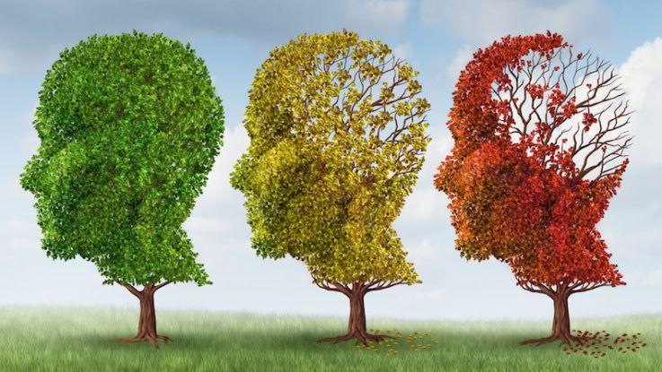 Старческое слабоумие (демнция). Как проявляется?