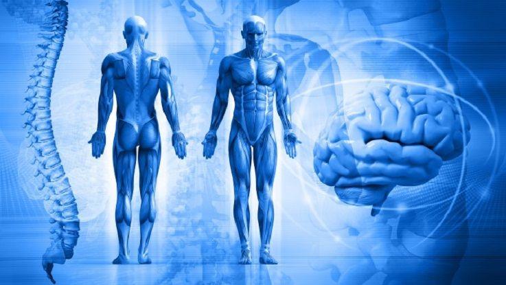 Психосоматика заболеваний: какую пользу мы извлекаем из болезни?