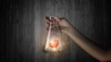 Суть эмоций: простая химия чувств