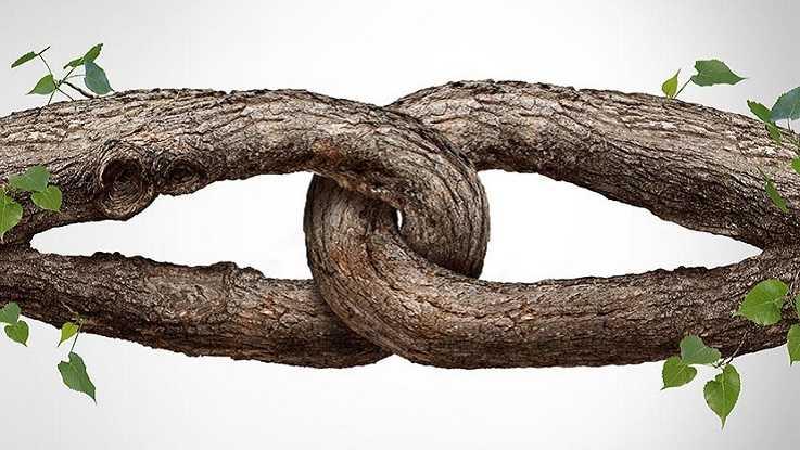 Созависимые отношения: семейное захватничество