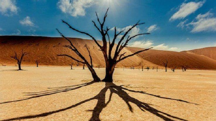 Посттравматичний стресовий розлад- як адаптуватися після війни