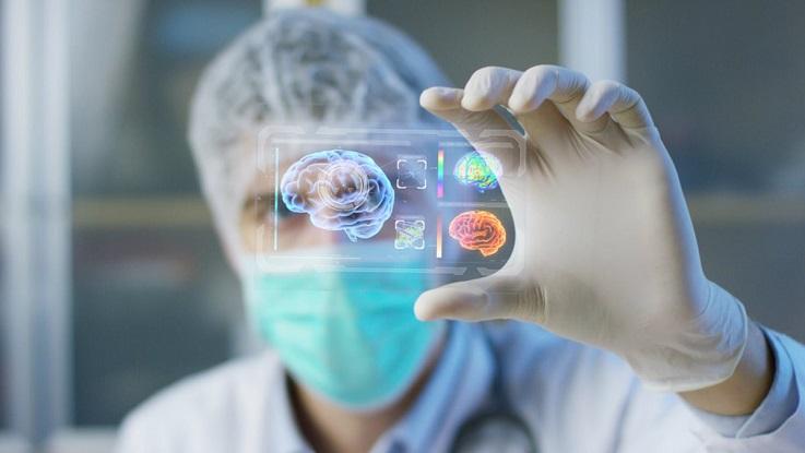 Человеческий мозг: популярные мифы и правда